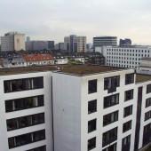 Bürogebäude mit Flachdach (Gründach)