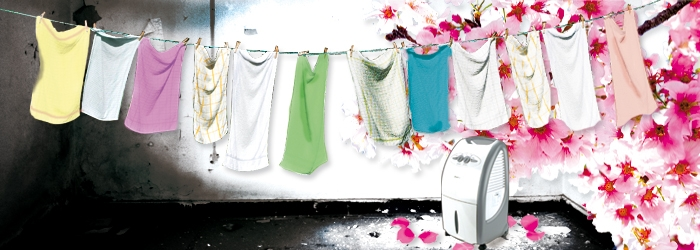 Luftentfeuchter gegen Muff im Waschkeller