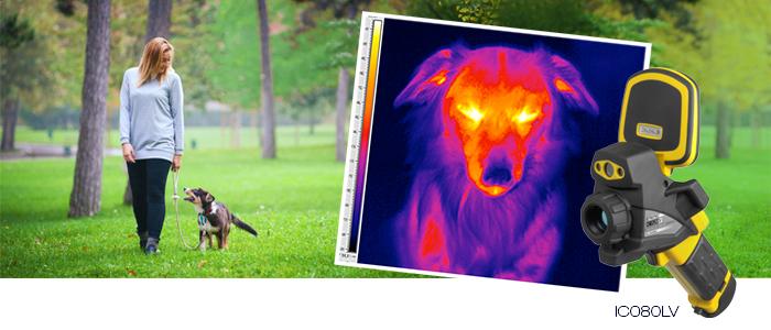 tro_blog_banner_veterinaerthermografie